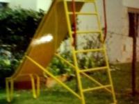 imagen-7